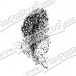Cling Spotted Feather