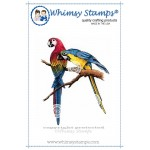 Whimsy Parrot Duo