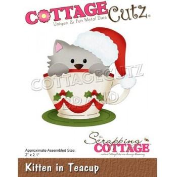 CC Kitten in Teacup