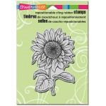 Cling Sweet Sunflower